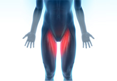 Hip Groin Disorders